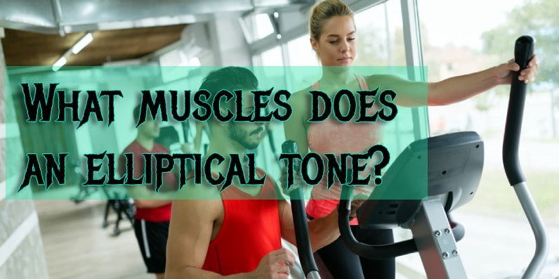 What muscles does the elliptical machine work?
